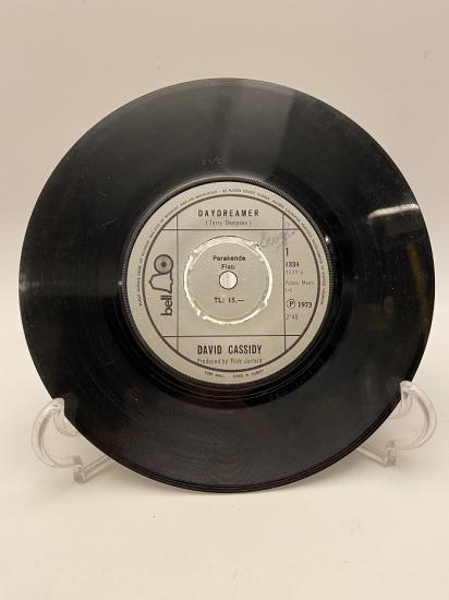 DAVID CASSIDY THE PUPPY SONG - DAYDREAMER 45 LİK YABANCI PLAK
